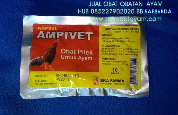 OBAT PILEK AMPIVET