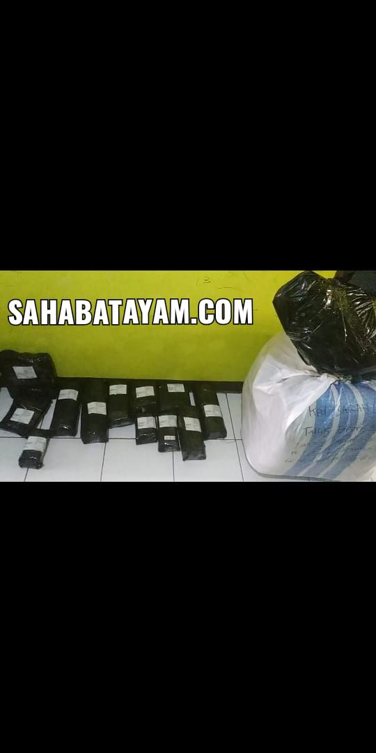 bukti packing barang 01