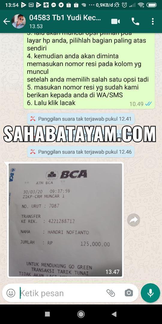 testi transfer sahabatayam